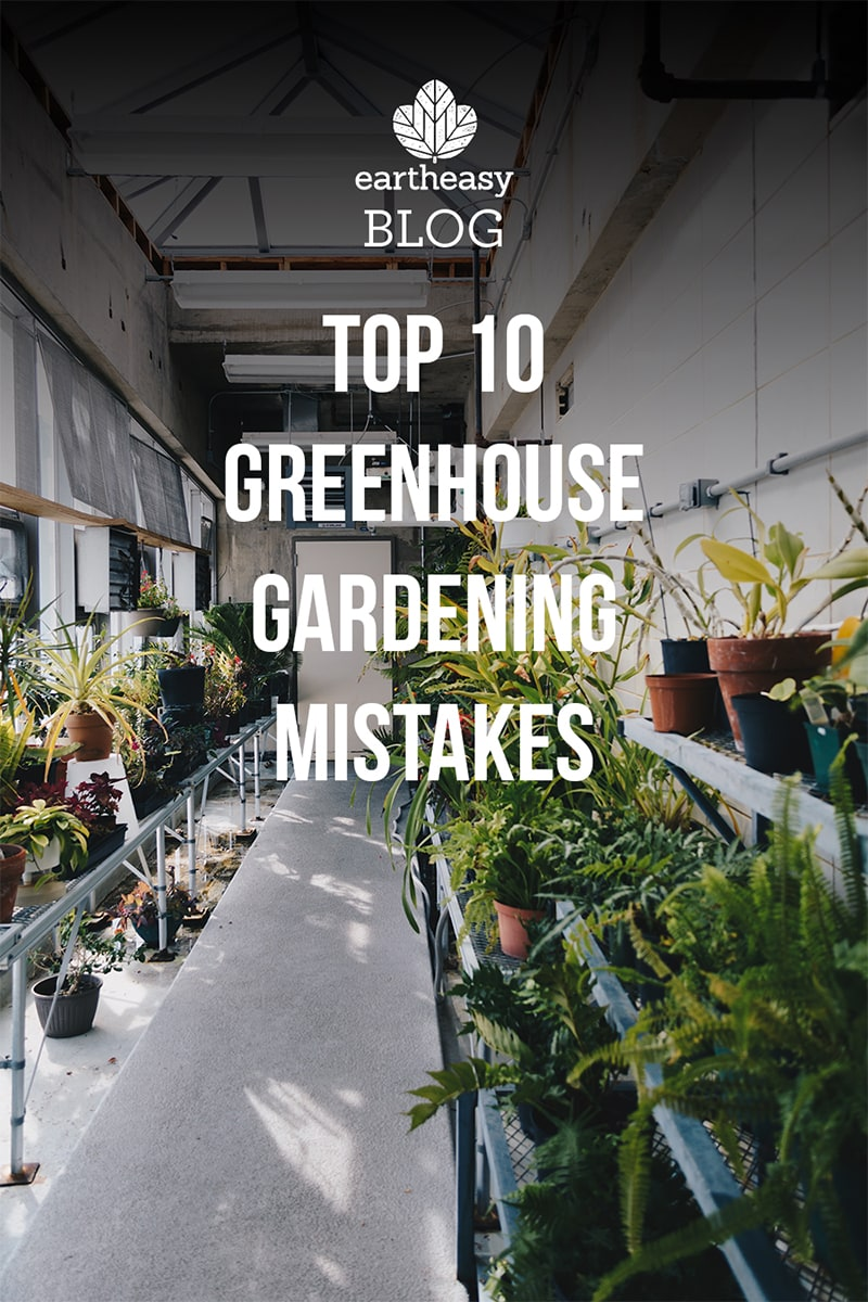 Top 10 Greenhouse Gardening Mistakes Eartheasy Guides Articles Pin Solar Tracker Schematic Diagram On Pinterest For Later