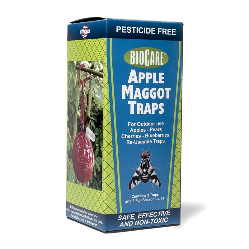 apple maggot traps