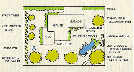 Backyard Wildlife Habitat landscape plan