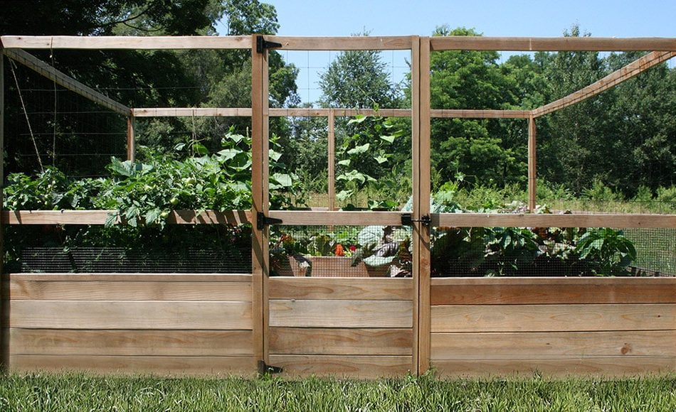 Complete Raised Garden Bed Kits