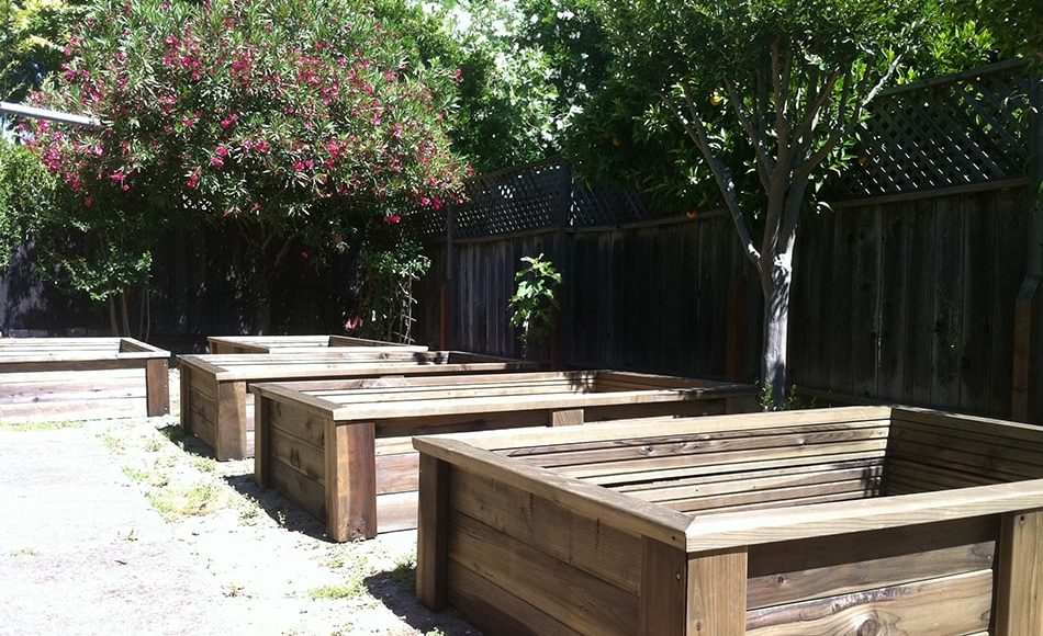 Raised garden beds eartheasy guides articles for Best wood for raised garden beds