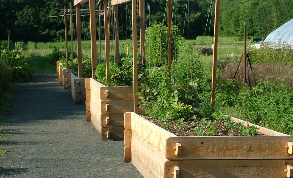 Farmstead Cedar Garden Beds