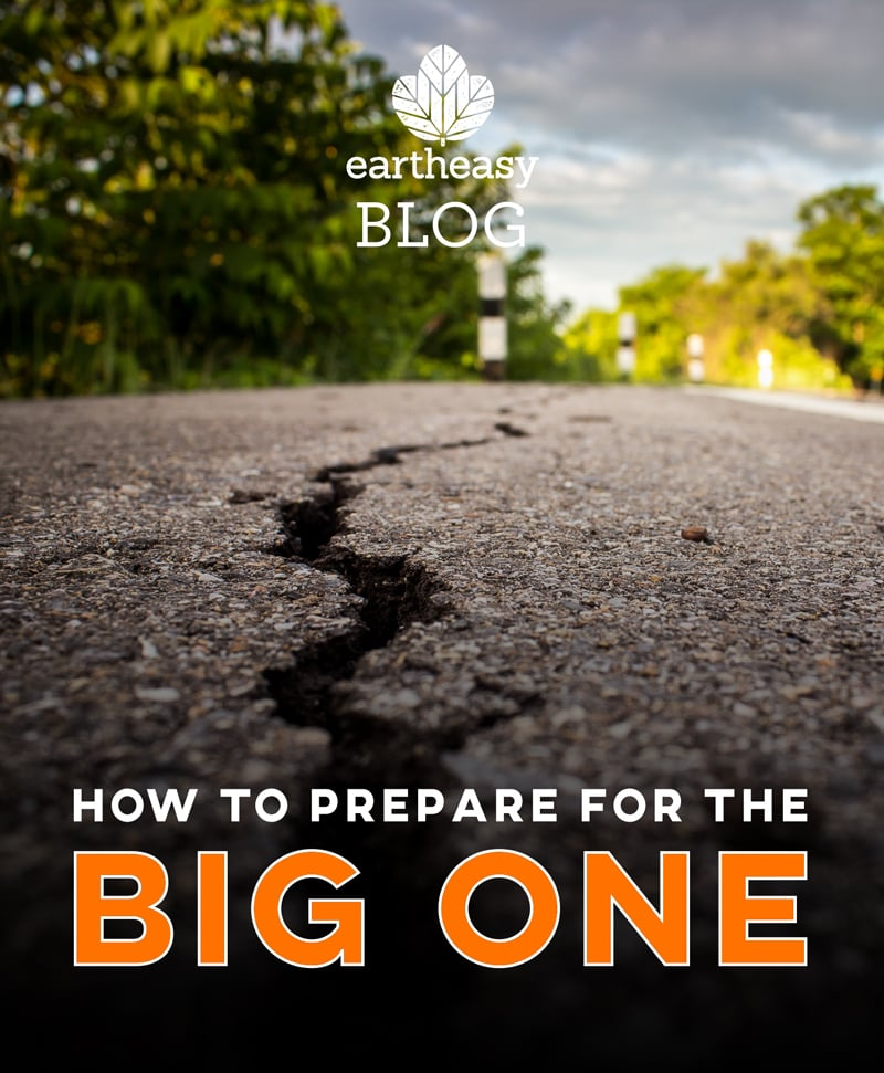 Earthquake Preparedness How To Prepare For The Big One