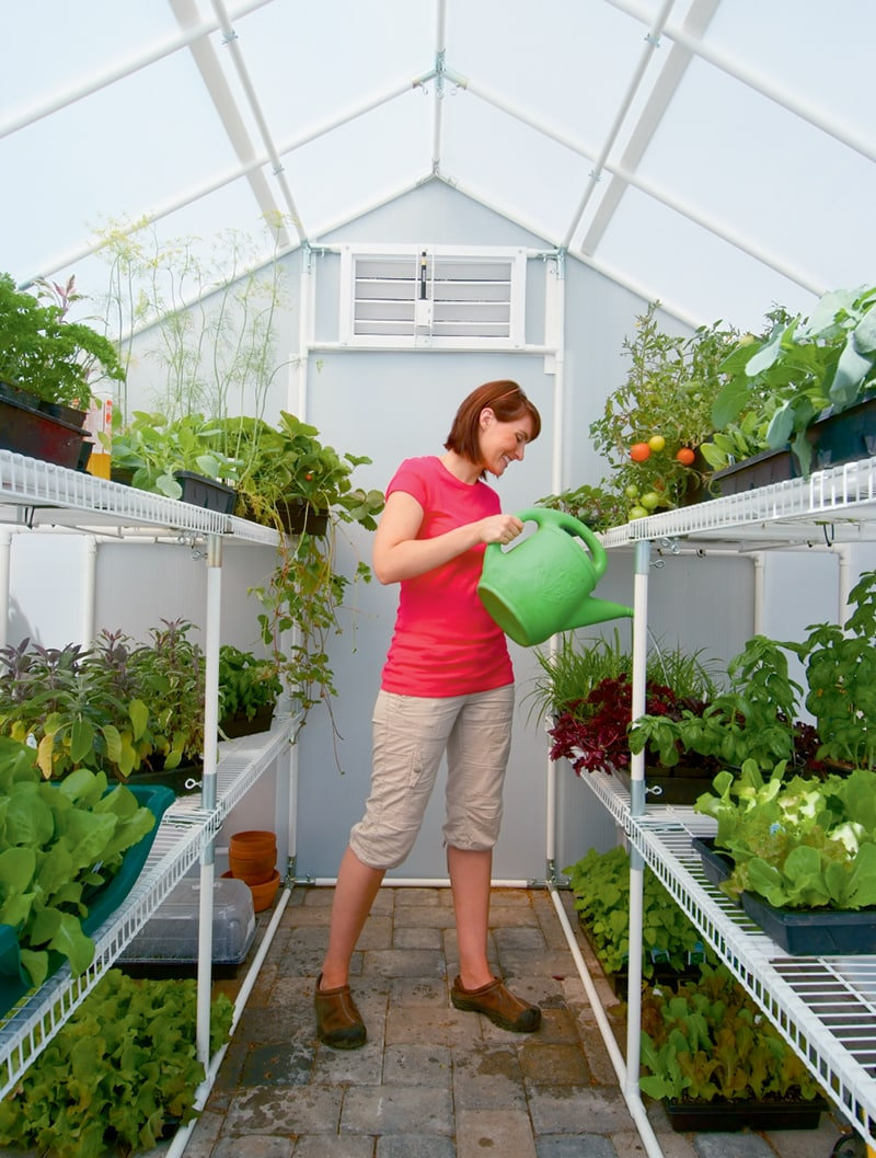 watering inside a greenhouse