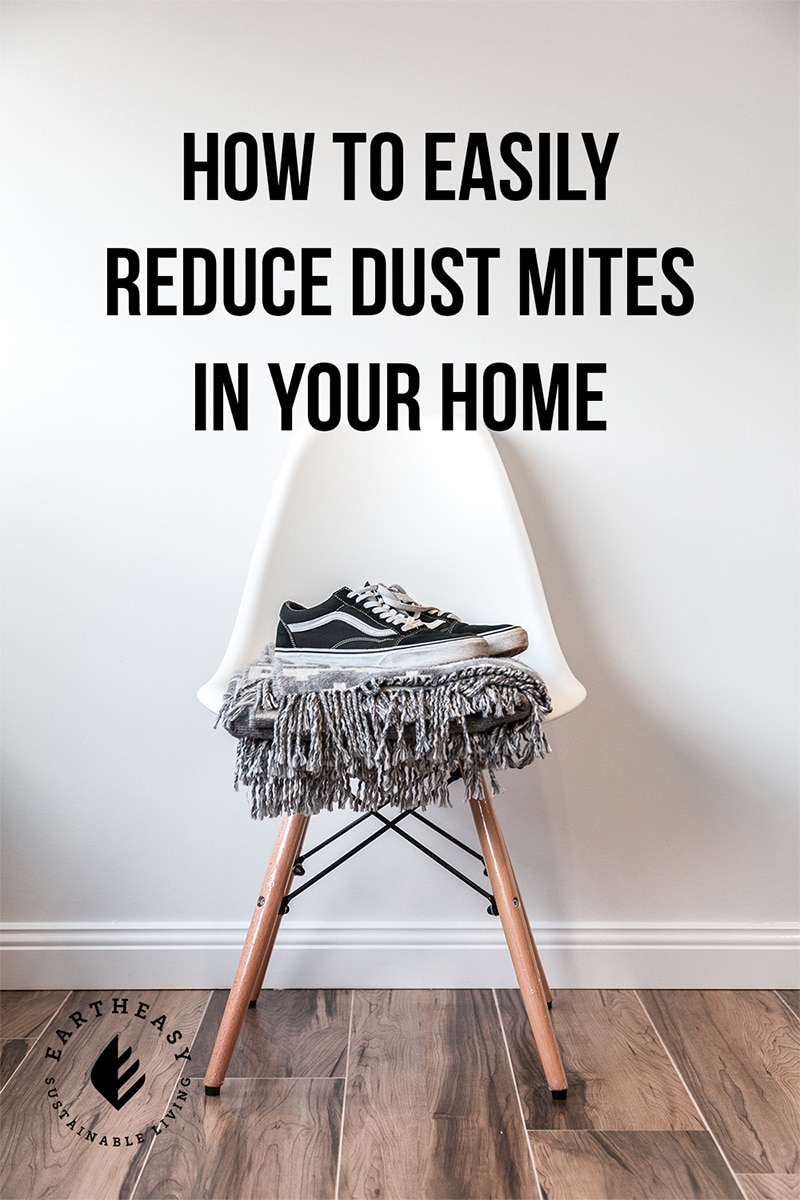 How To Easily Reduce Dust Mites In Your Home Eartheasy