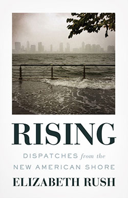 book cover for Rising by Elizabeth Rush