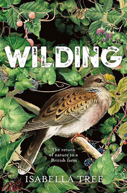 book cover for Wilding by Isabella Tree