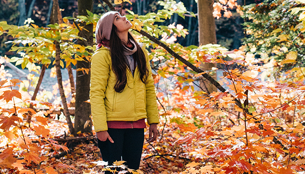 woman looking up at autumn-colored trees